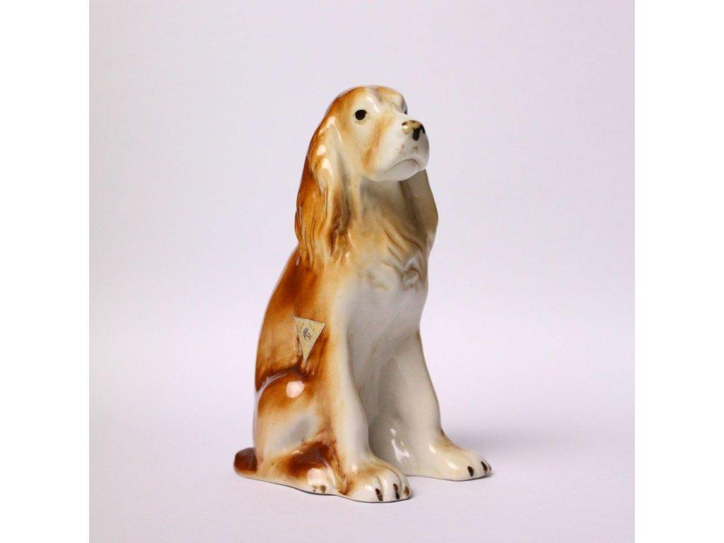 Porcelánový pes kokršpaněl ROYAL DUX DUCHCOV x331 10