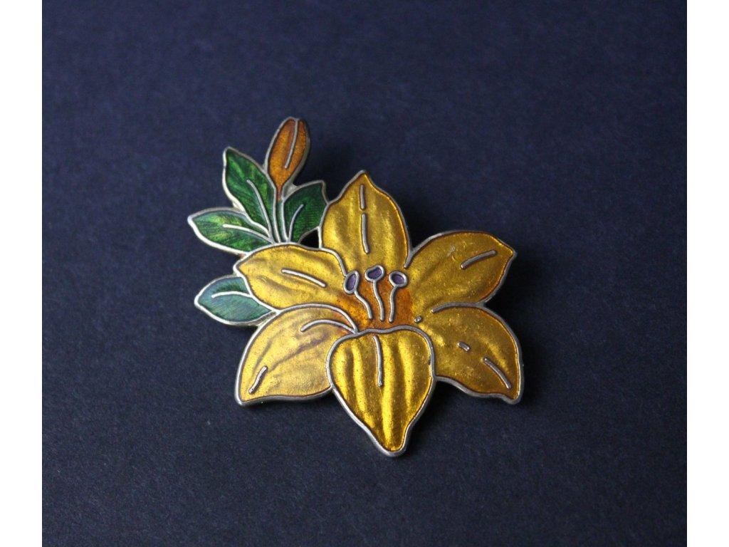 Stará brož květina x761 1