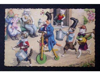 Stará pohlednice kočičí rodinka kočka Belgium P203 (1)