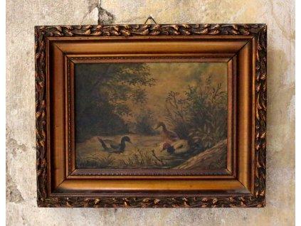 Obraz Zatiší Kachny x1912 (5)