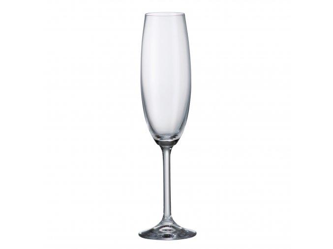 Sada 6 kusů sklenic na šampaňské COLIBRI 220ml Crystalite Bohemia