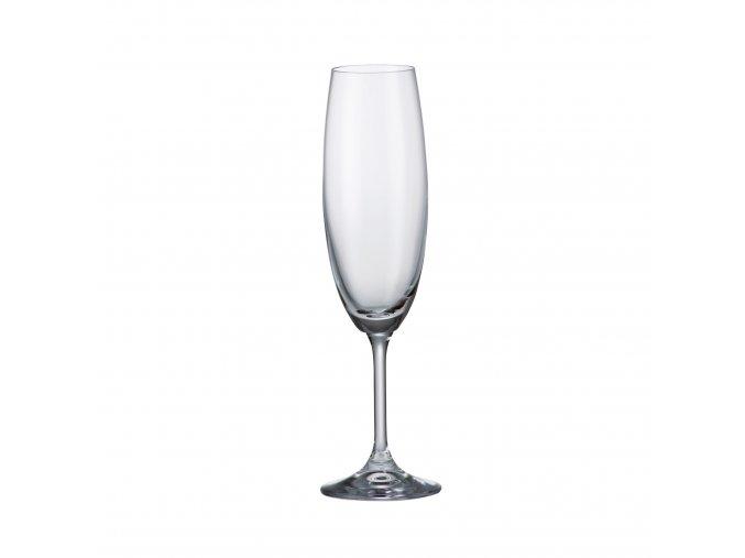 Sada 6 kusů sklenic na šampaňské SYLVIA 220ml Crystalite Bohemia