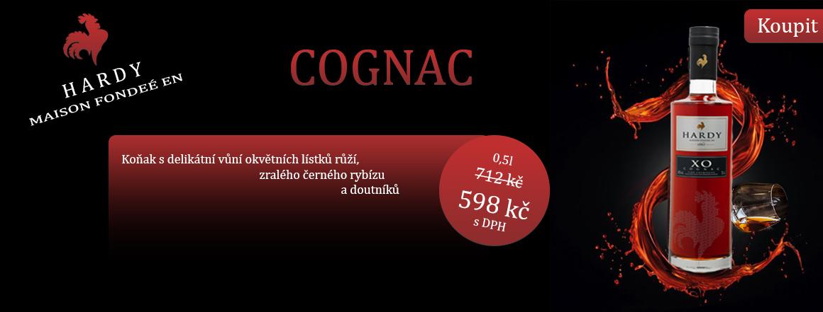Cognac Hardy XO 0,5l