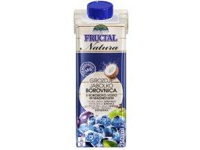 Fructal Natura Borůvka 100% - juice 0,25L x 24ks