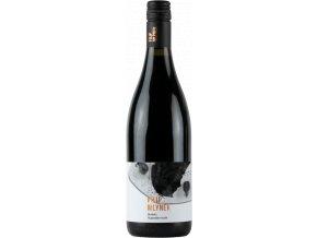 Vinařství Filip Mlýnek Pinot Noir Rulandské modré výběr z hroznů Brodsko 2019 0,75l