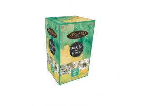 regalo bt with jasmine 01