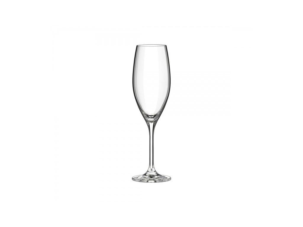 champagne flute 230