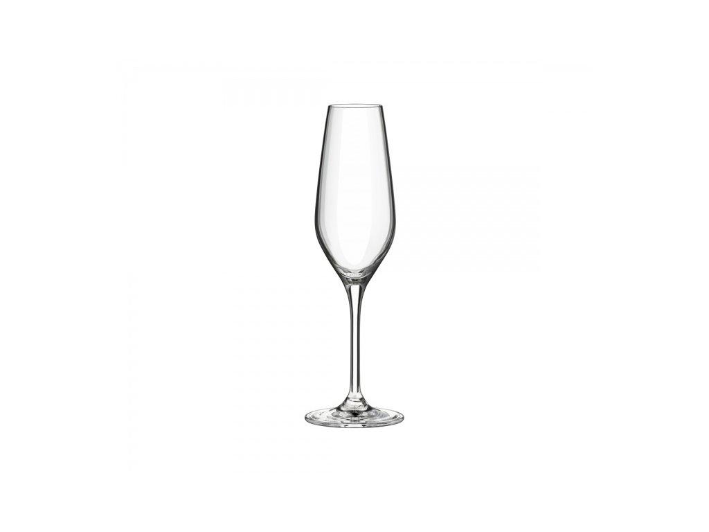 champagne 205