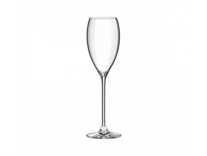 champagne 260