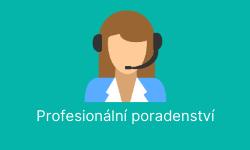Profesionální poradenství