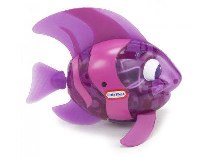 0023867 sparkle bay svitici rybka 4 druhy