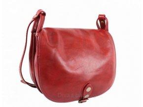 Dámská kožená kabelka DIVAs TONIA-různé barvy