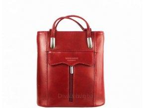 Dámská kožená kabelka DIVAs DOROTHY-různé barvy