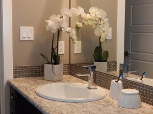 Čistá a elegantní koupelna