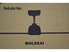FARO 33475 MOLOKAI, tmavý ořech, stropní ventilátor  DC motor, dálkové ovládání