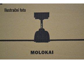 Stropní ventilátor s osvětlením Faro Molokai 33475