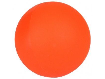 míček na hokejbal Raptor X