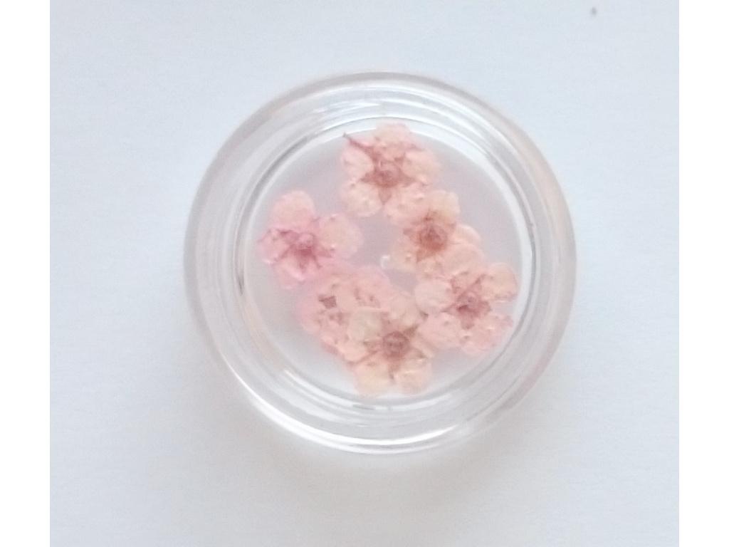 susene kvety 12