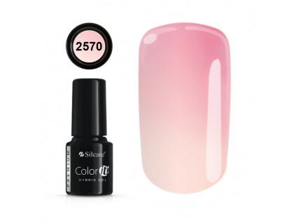 color it premium 2570