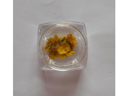 Sušené kvety č.10