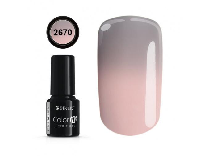 color it premium 2670