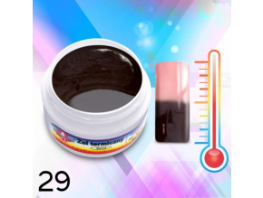 thermo 29
