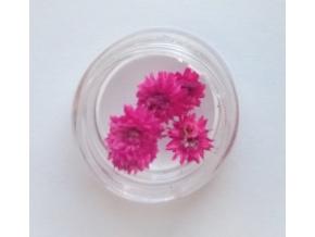 susene kvety 8
