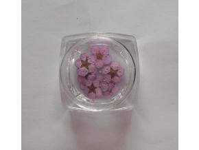 Sušené kvety č.5