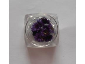 Sušené kvety č.12