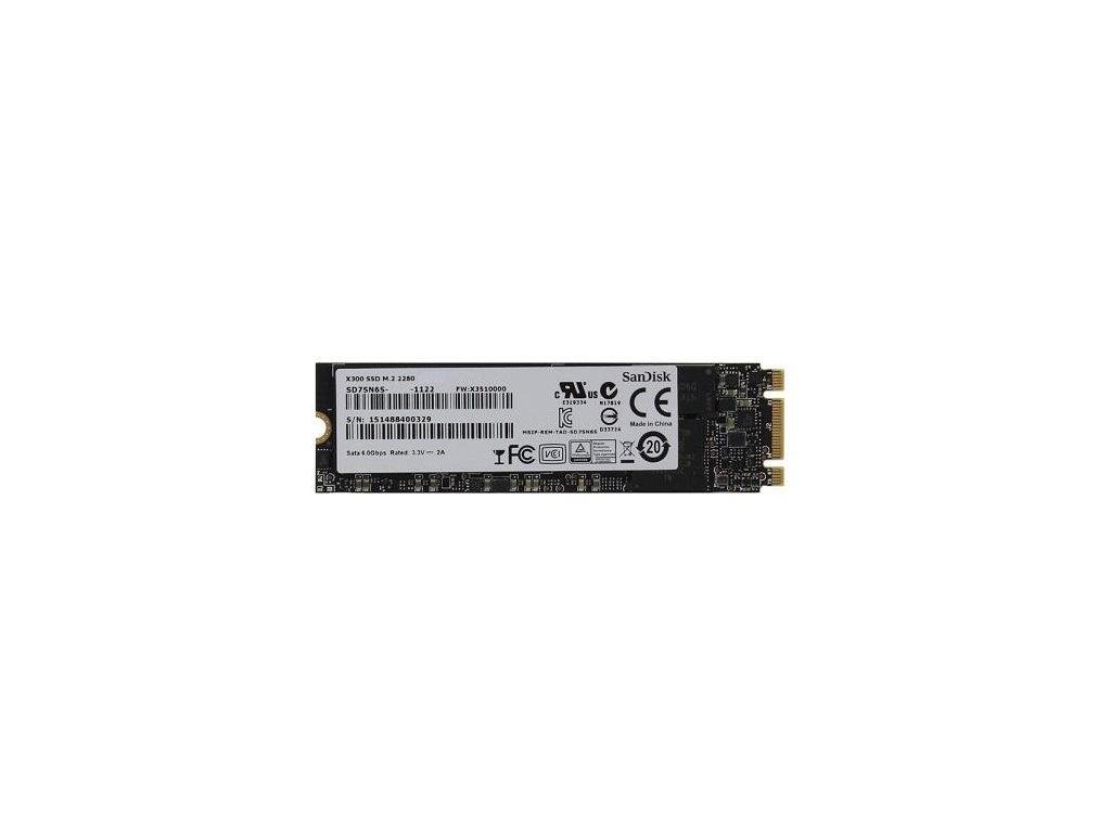 SanDisk X300 256GB SSD