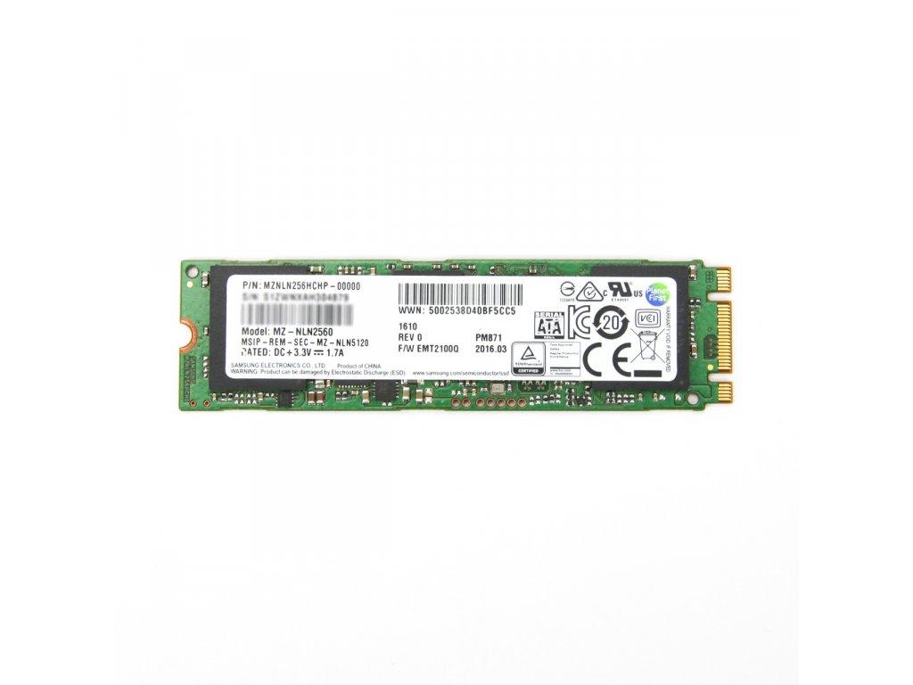 256GB M.2 NVME SSD