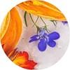 tesori_aviváž_ayurveda_květy