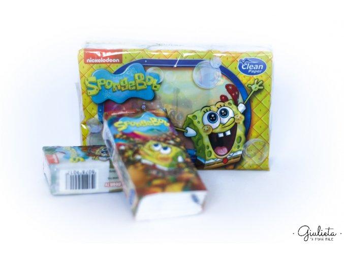 Sponge teri