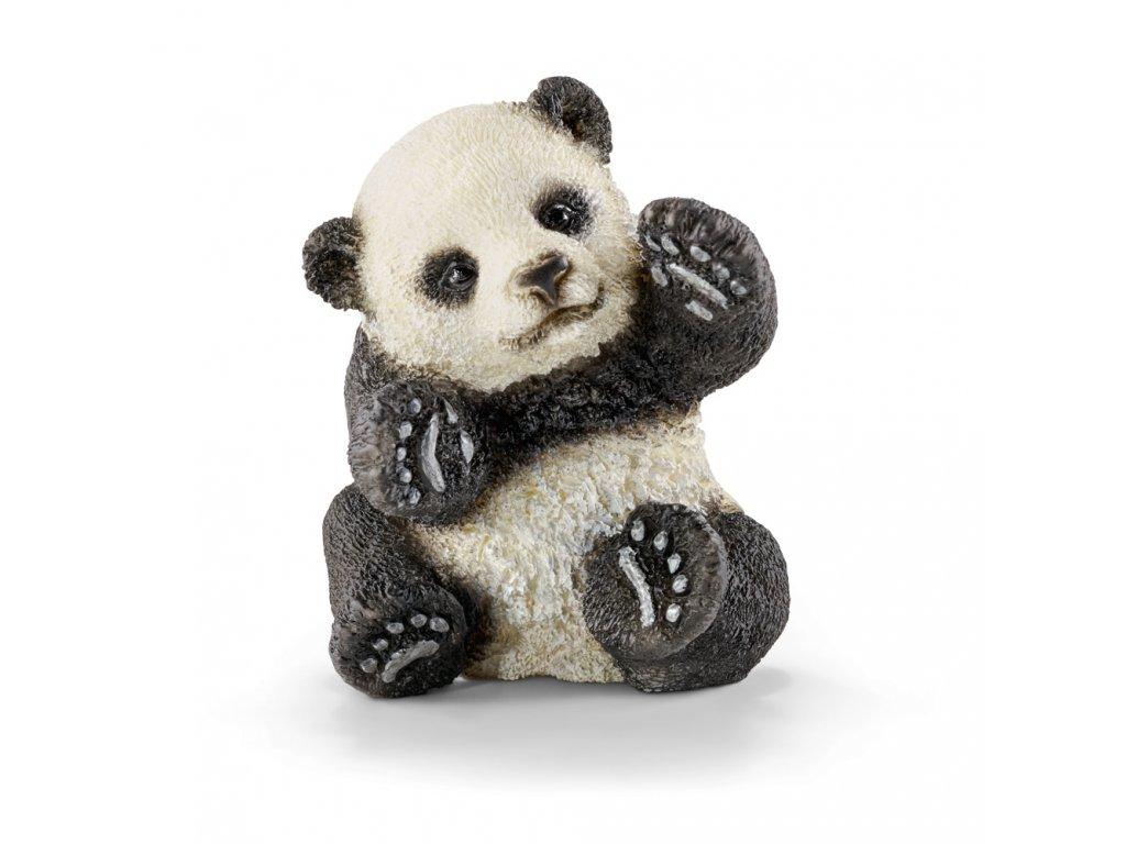 Zvířátko - mládě pandy hrající si