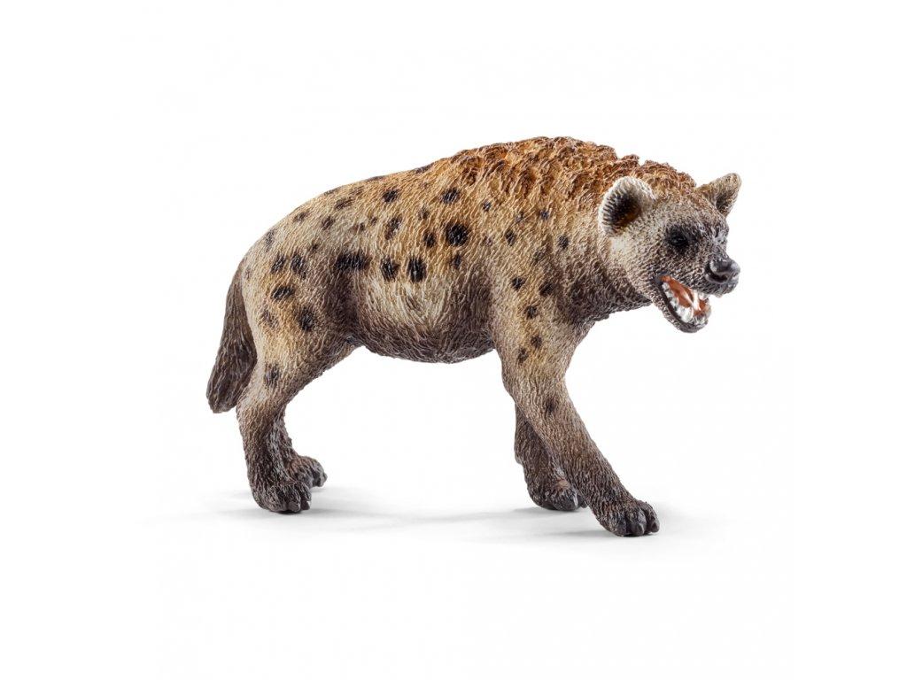 Zvířátko - hyena