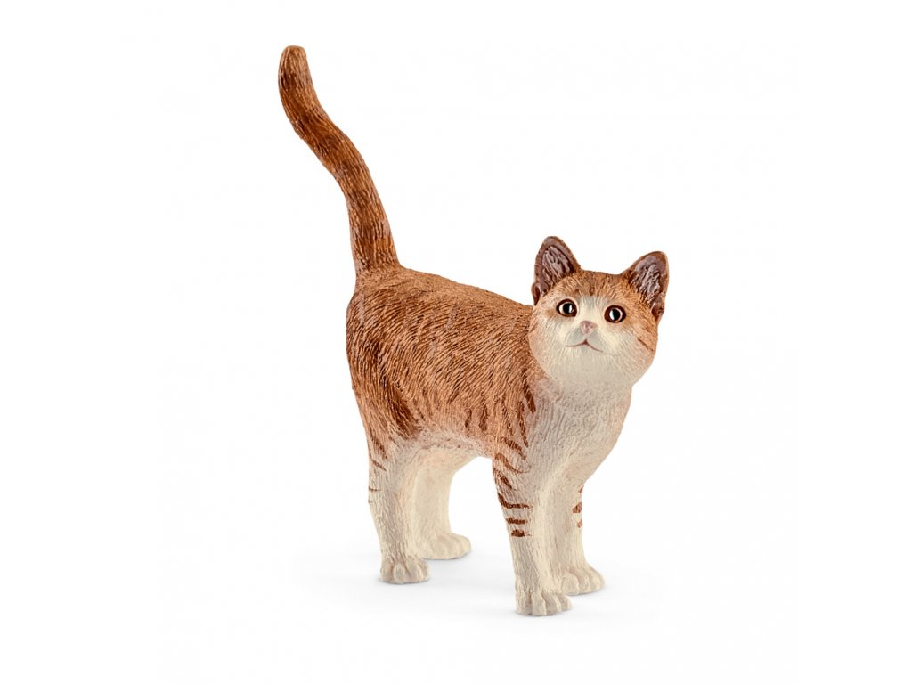 Zvířátko - kočka