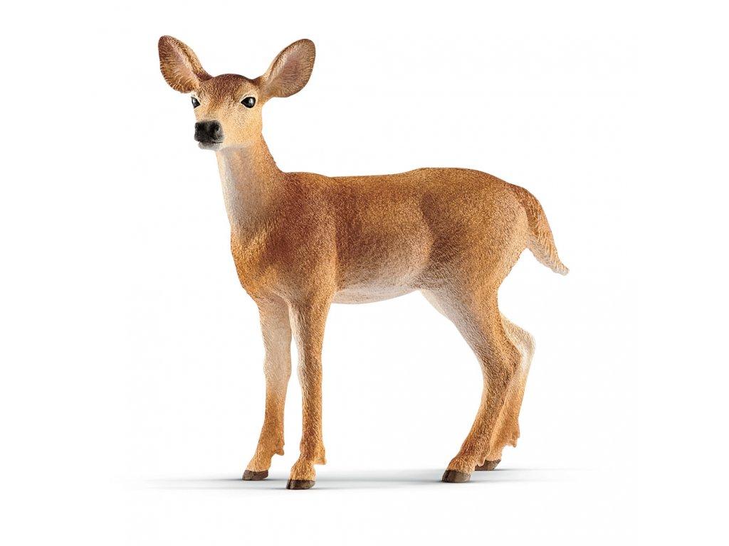 Zvířátko - Laň jelena běloocasého