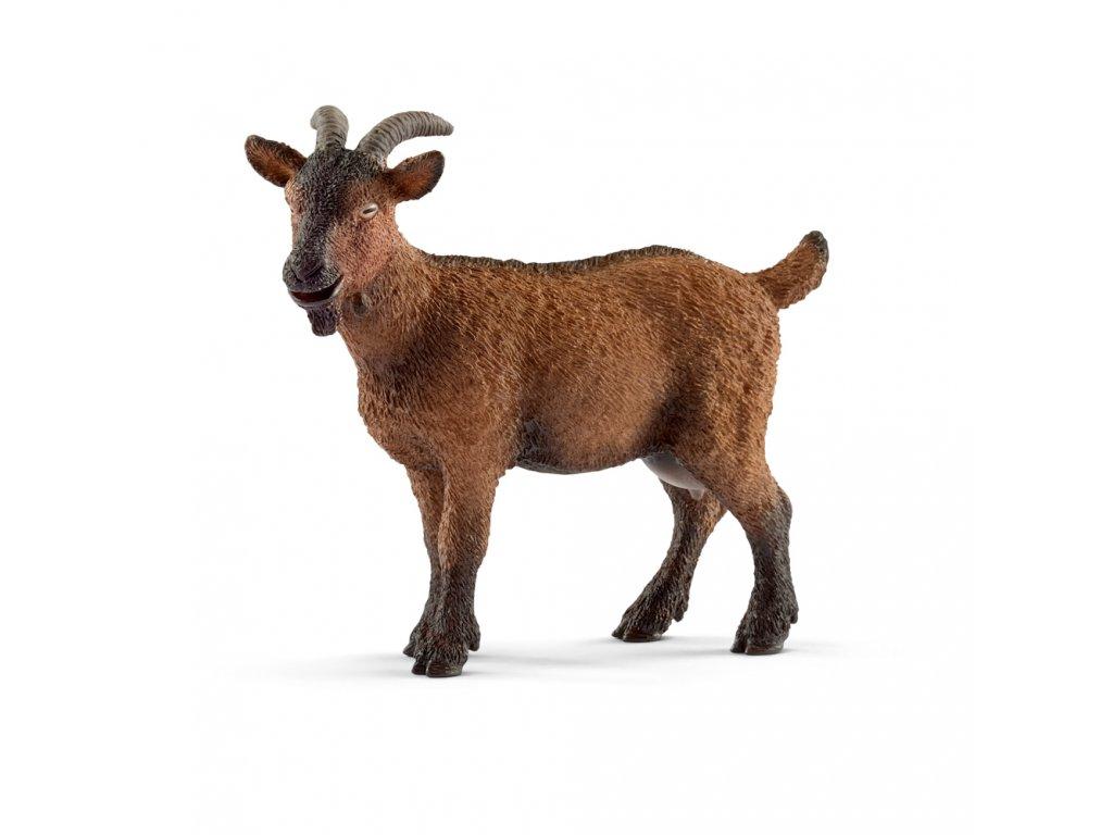 Zvířátko - koza