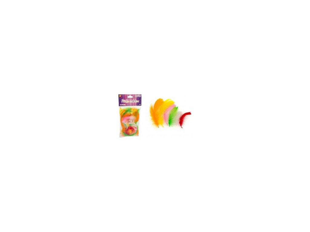Dekorační peříčka - mix, P-8925