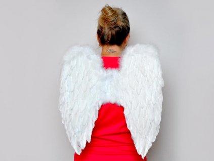 andělská křídla z peří 50x50cm 8885877