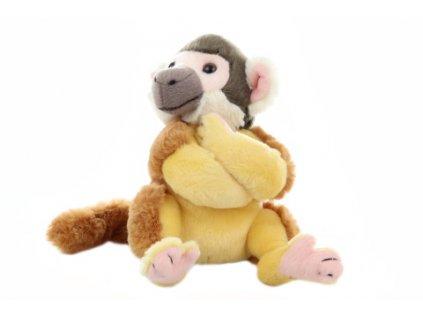 Plyš Kotul opice