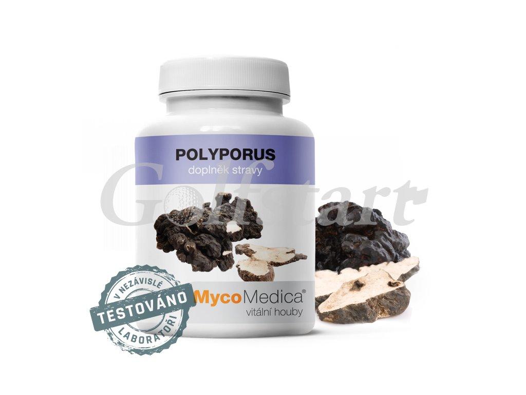 Polyporus v optimální koncentraci