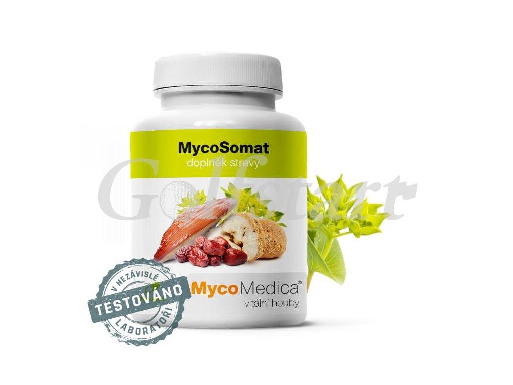 MycoSomat v optimální koncentraci 90x 500 mg
