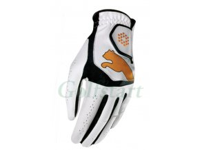 Puma glove junior