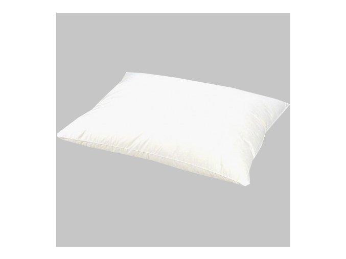 Péřový polštář 40x60 cm, bílý