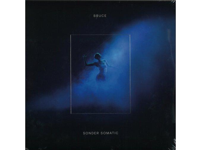 bruce sonder somatic