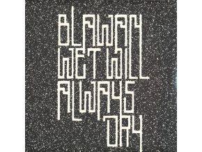 "Blawan - Wet Will Always Dry 2x12"""