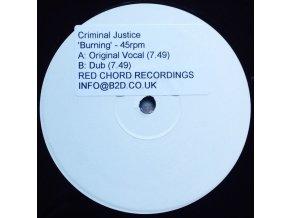 Criminal Justice – Burning