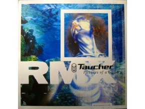 Taucher ‎– Pictures Of A Gallery RMX.jpeg