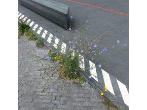 Upsammy – Bend [Dekmantel]3340.jpeg